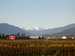 Fraser Valley Farmland