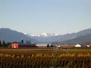 Fraser Valley Farmland