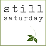 StillSaturday