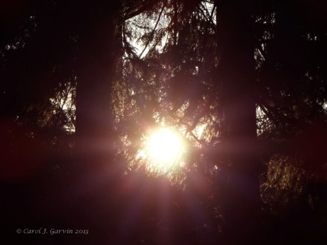 Sun shafts copy