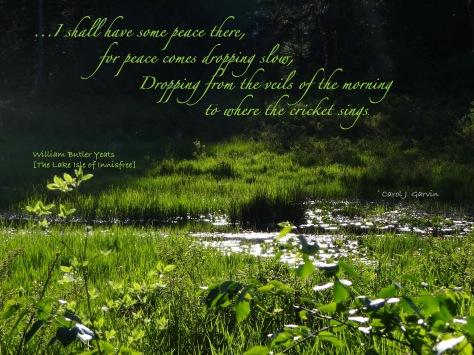 Yeats 27 - Innisfree Peace