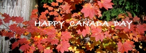 Canada Day Maples