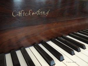 Chickering Piano Keys-1