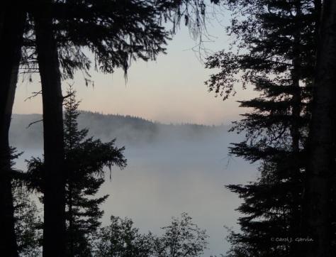 Serene Morning Mist