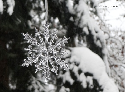 Cold Snowflake