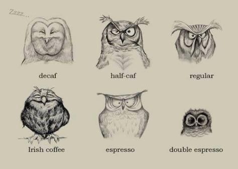 Coffee Owls